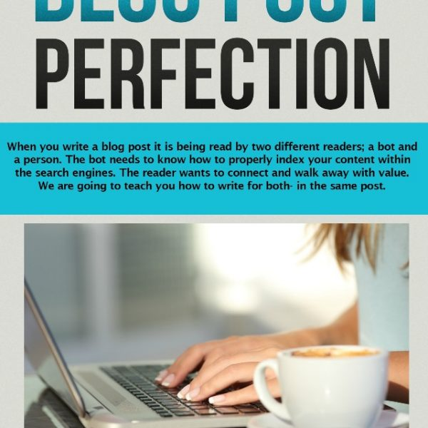 Skyrocket your pageviews with The Perfect Blog Post